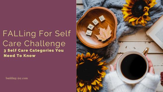 self care categories